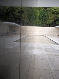 Mies Van Der Rohe Pavilion: Reflection