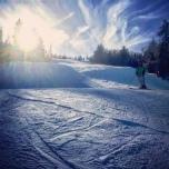 Snowshoe Blue